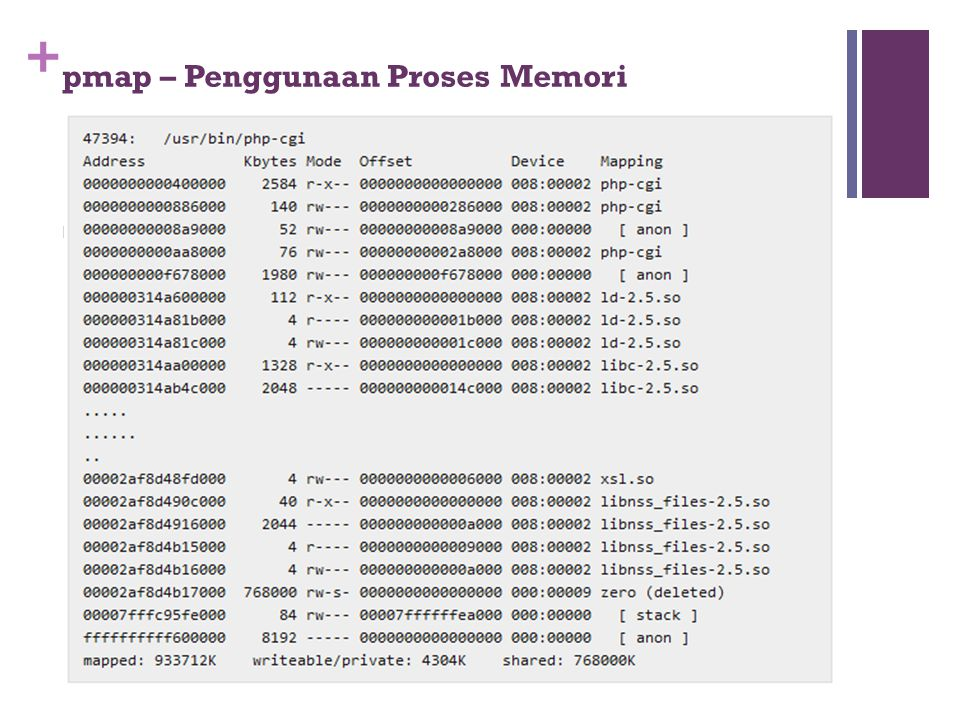 pmap – Penggunaan Proses Memori