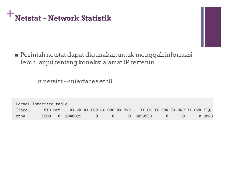 Netstat - Network Statistik