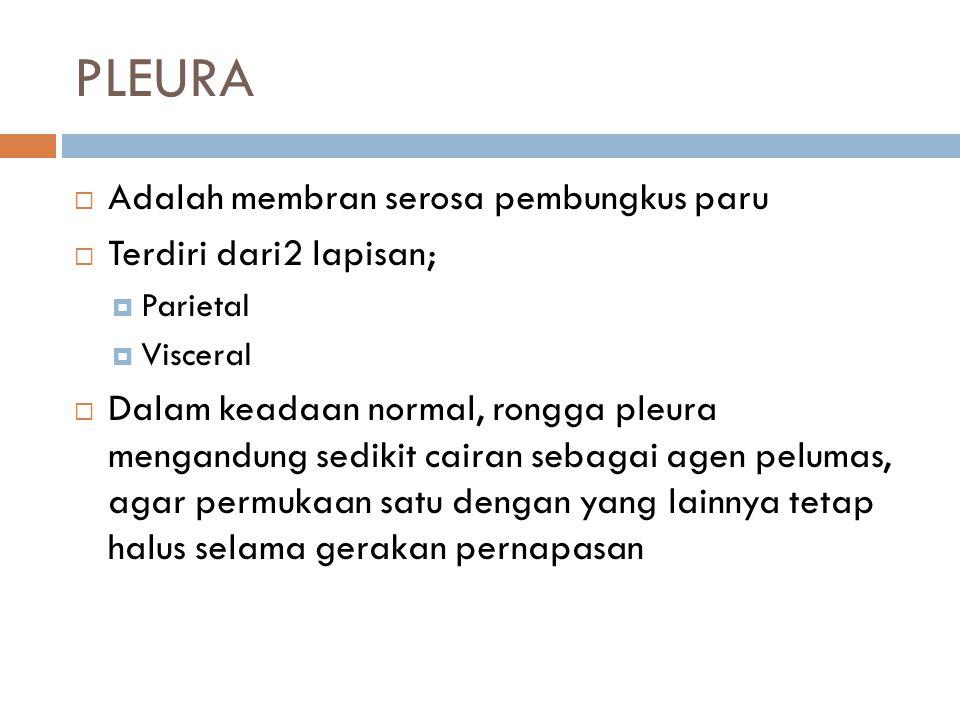 PLEURA Adalah membran serosa pembungkus paru Terdiri dari2 lapisan;