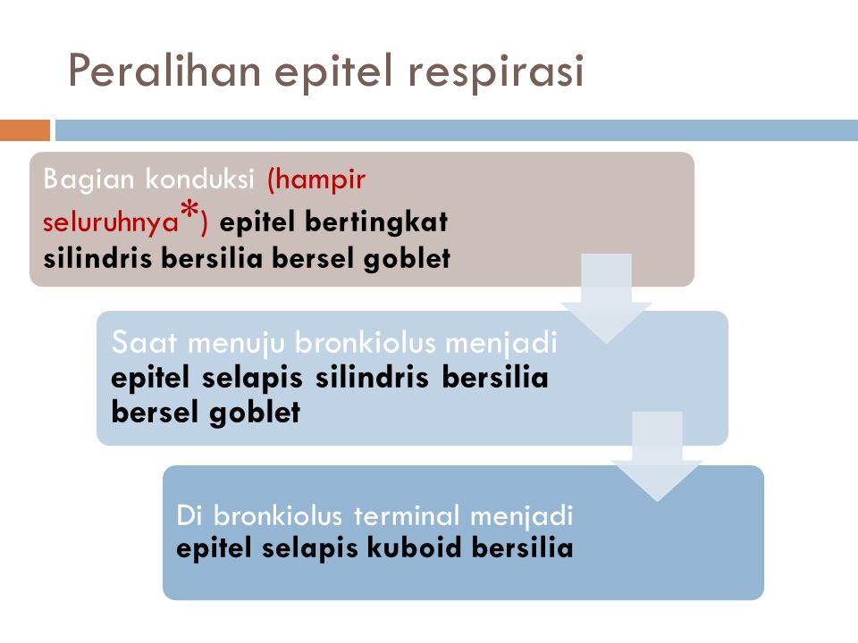 Peralihan epitel respirasi