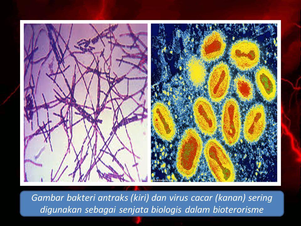 Gambar bakteri antraks (kiri) dan virus cacar (kanan) sering digunakan sebagai senjata biologis dalam bioterorisme