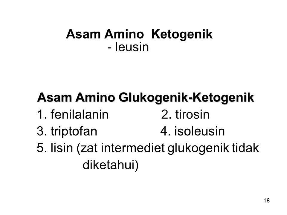 Asam Amino Glukogenik-Ketogenik
