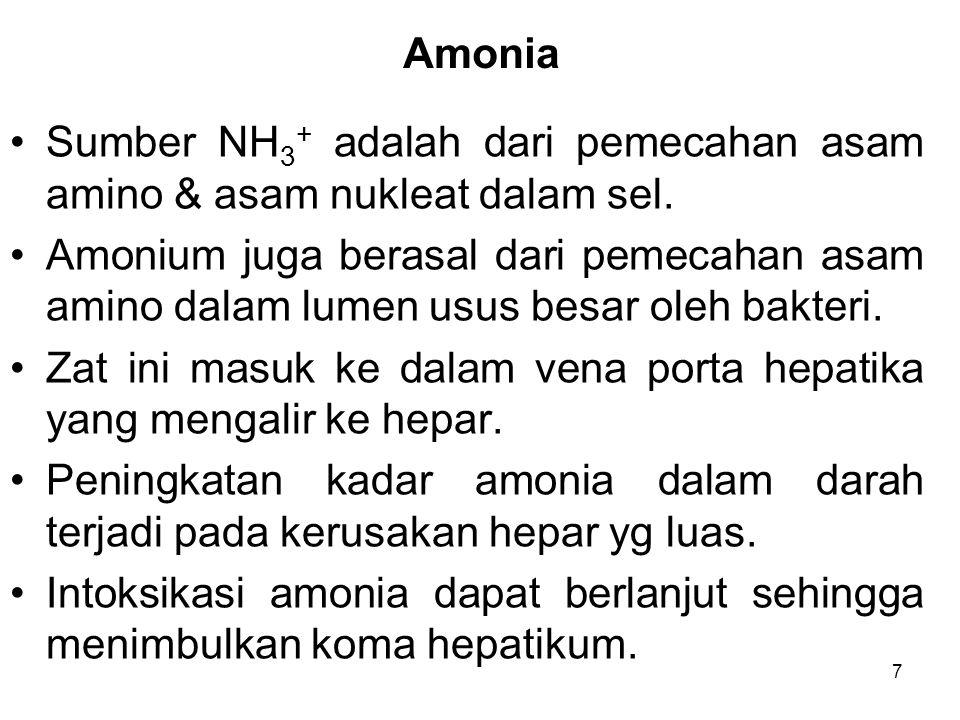 Amonia Sumber NH3+ adalah dari pemecahan asam amino & asam nukleat dalam sel.
