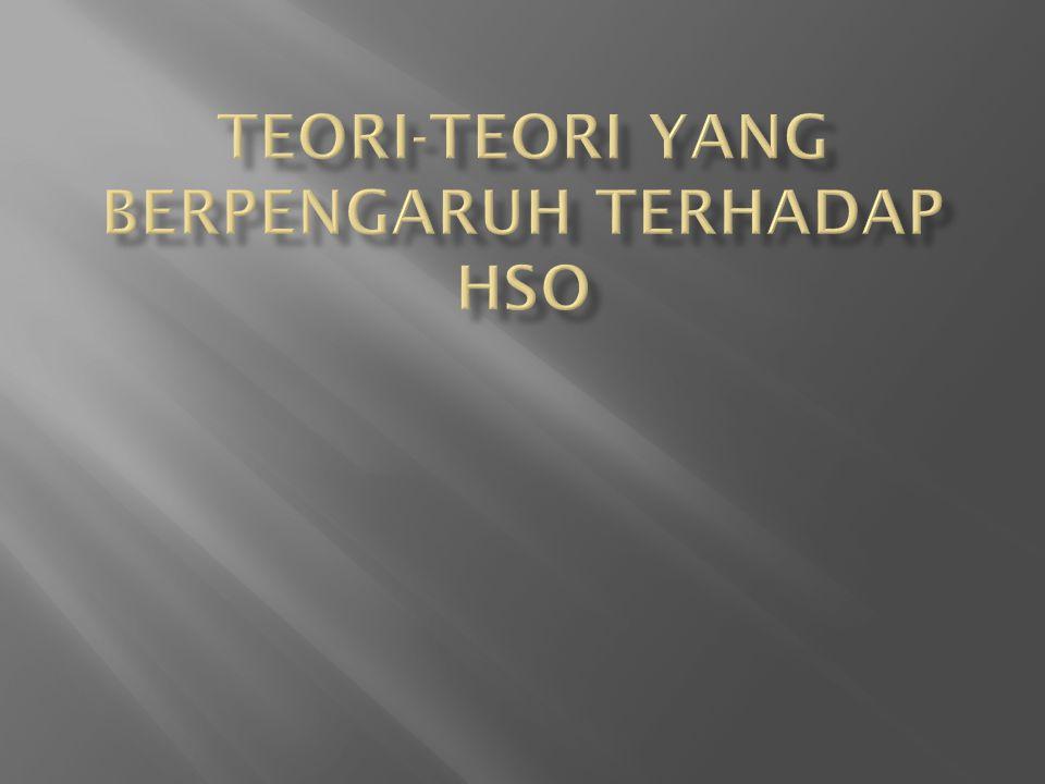TEORI-TEORI YANG BERPENGARUH TERHADAP HSO
