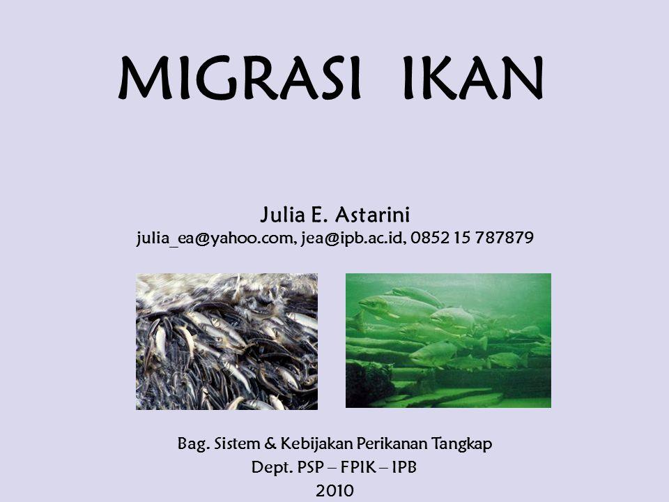 MIGRASI IKAN Julia E. Astarini