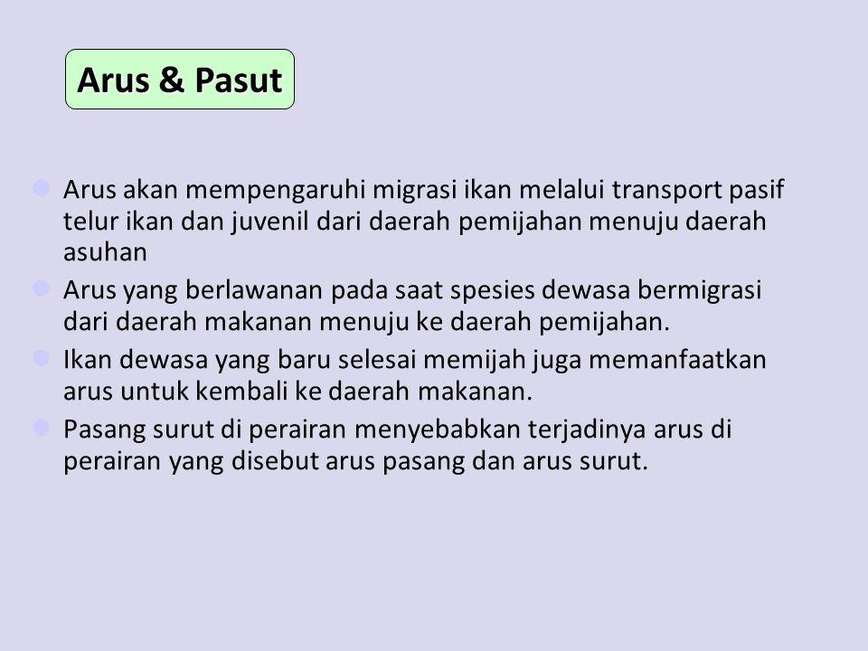 Arus & Pasut Arus akan mempengaruhi migrasi ikan melalui transport pasif telur ikan dan juvenil dari daerah pemijahan menuju daerah asuhan.