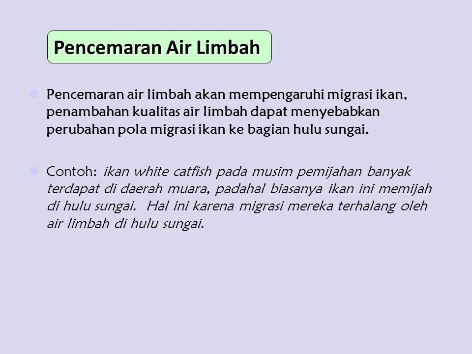 Pencemaran Air Limbah