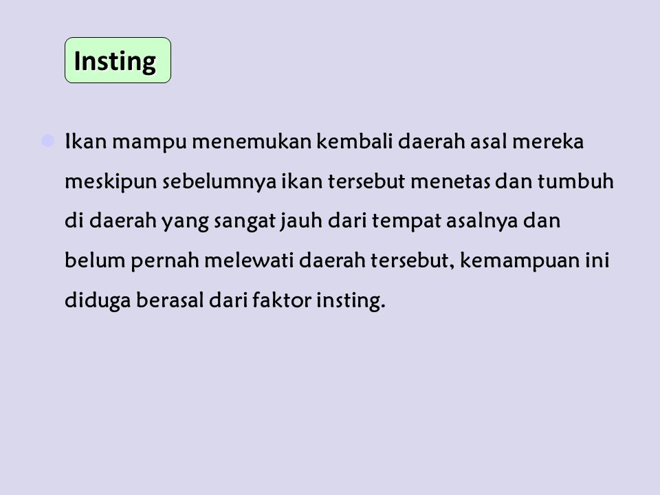 Insting