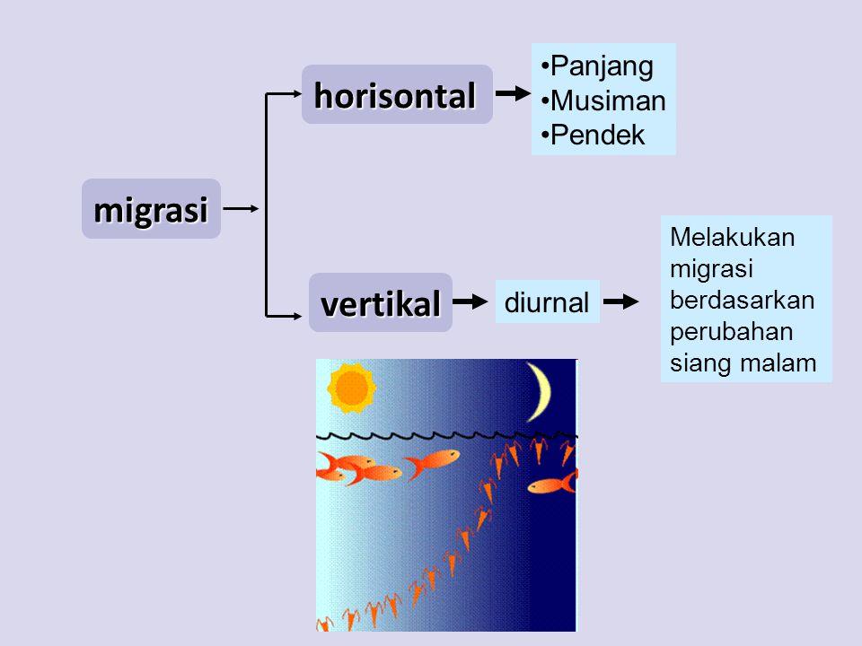 horisontal migrasi vertikal Panjang Musiman Pendek diurnal Melakukan