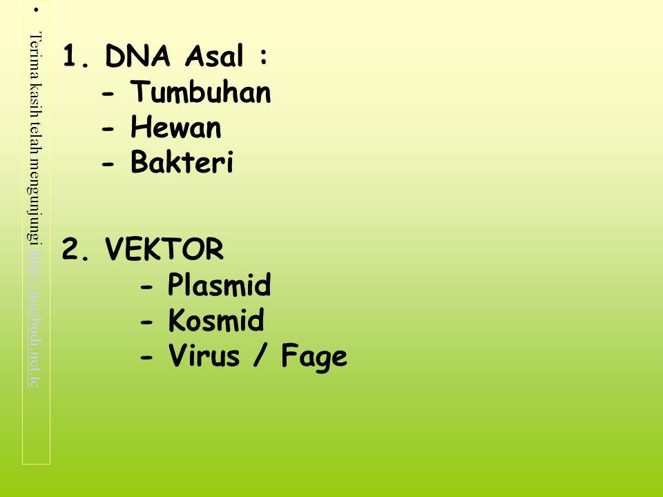 1. DNA Asal : - Tumbuhan - Hewan - Bakteri 2. VEKTOR - Plasmid - Kosmid - Virus / Fage