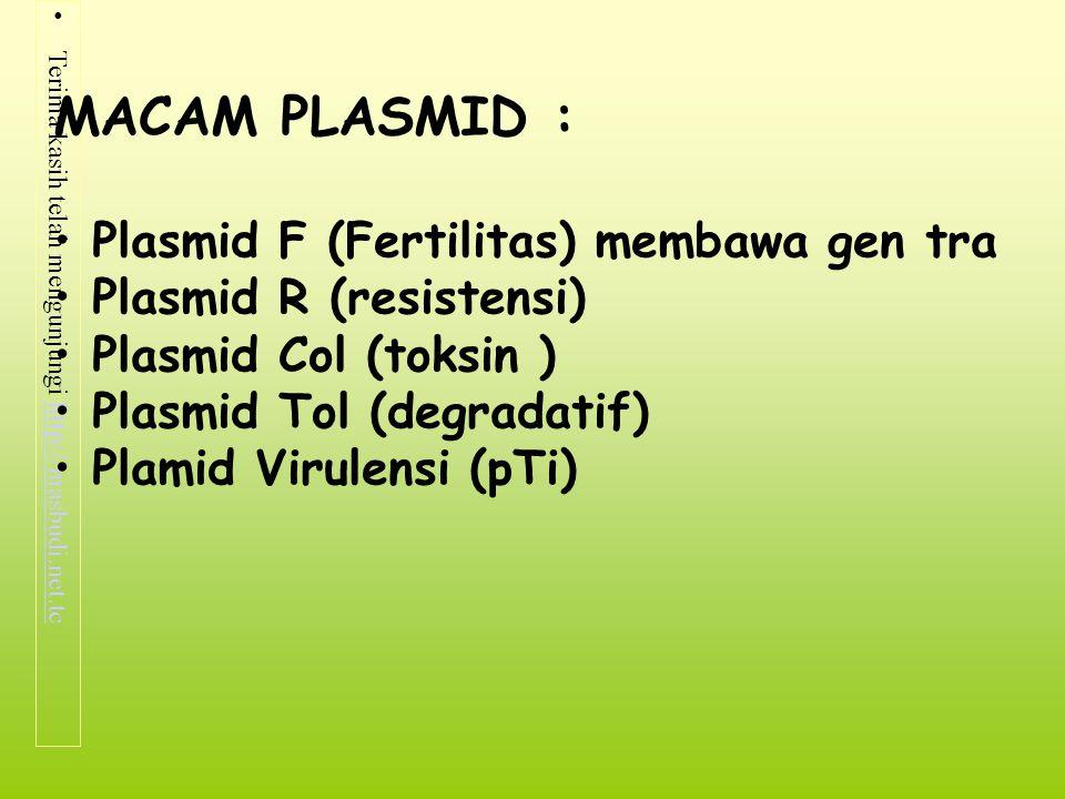 MACAM PLASMID : Plasmid F (Fertilitas) membawa gen tra