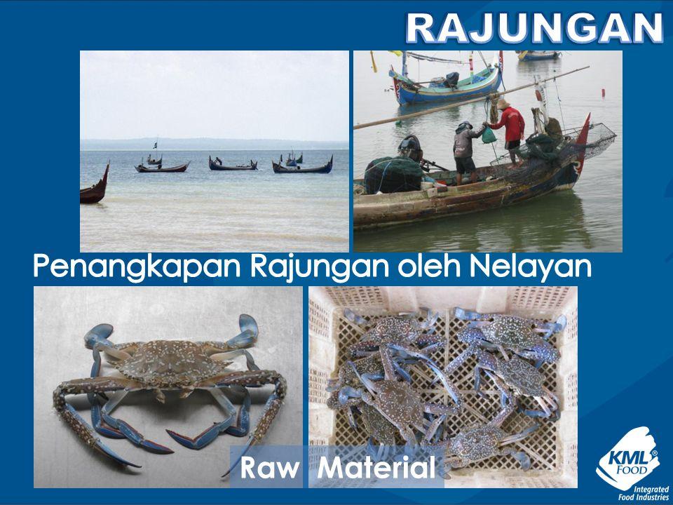 Penangkapan Rajungan oleh Nelayan