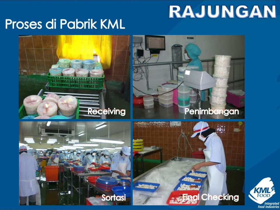 RAJUNGAN Proses di Pabrik KML Receiving Penimbangan Sortasi