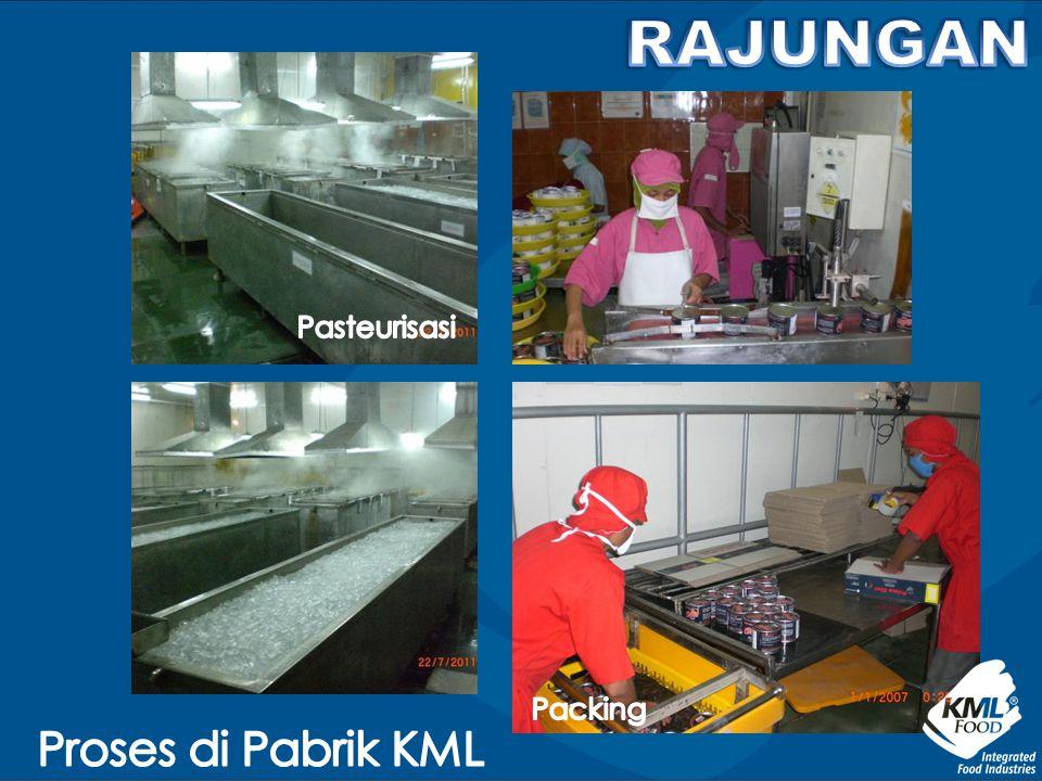 RAJUNGAN Pasteurisasi Packing Proses di Pabrik KML