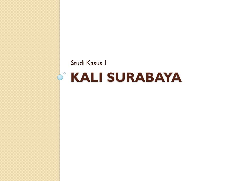 Studi Kasus 1 Kali Surabaya