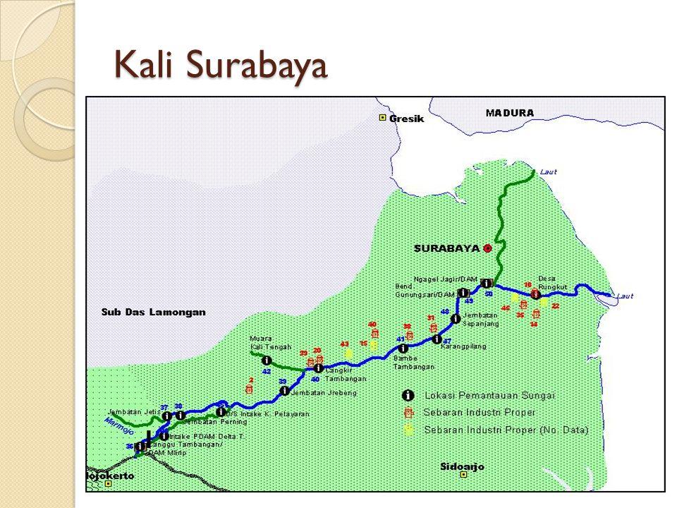 Kali Surabaya