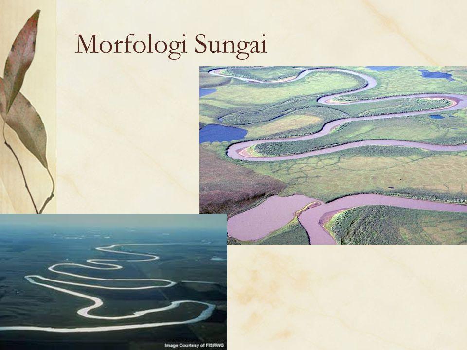 Morfologi Sungai