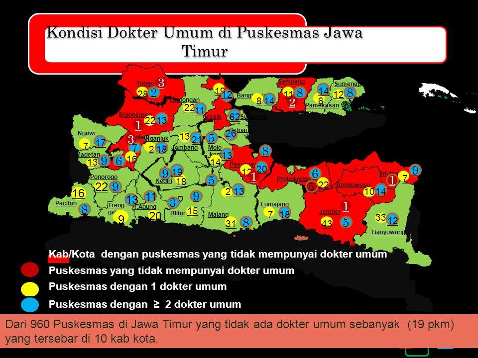 Kondisi Dokter Umum di Puskesmas Jawa Timur