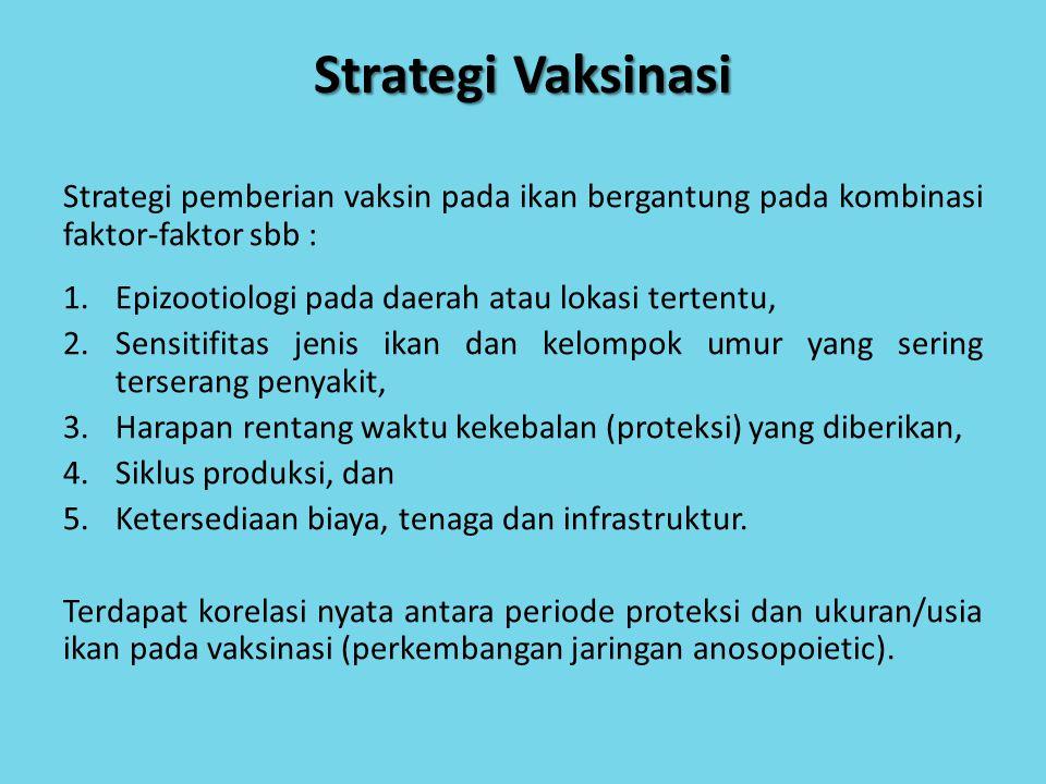 Strategi Vaksinasi Strategi pemberian vaksin pada ikan bergantung pada kombinasi faktor-faktor sbb :