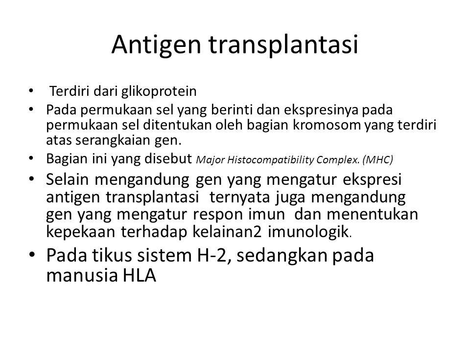Antigen transplantasi