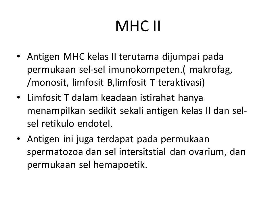 MHC II Antigen MHC kelas II terutama dijumpai pada permukaan sel-sel imunokompeten.( makrofag, /monosit, limfosit B,limfosit T teraktivasi)