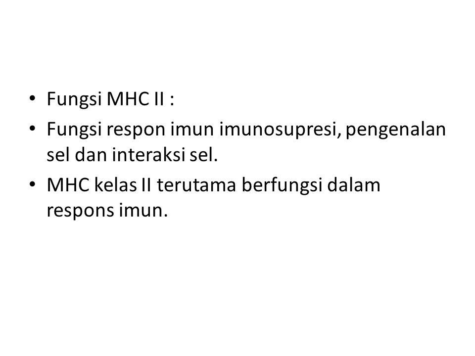 Fungsi MHC II : Fungsi respon imun imunosupresi, pengenalan sel dan interaksi sel.