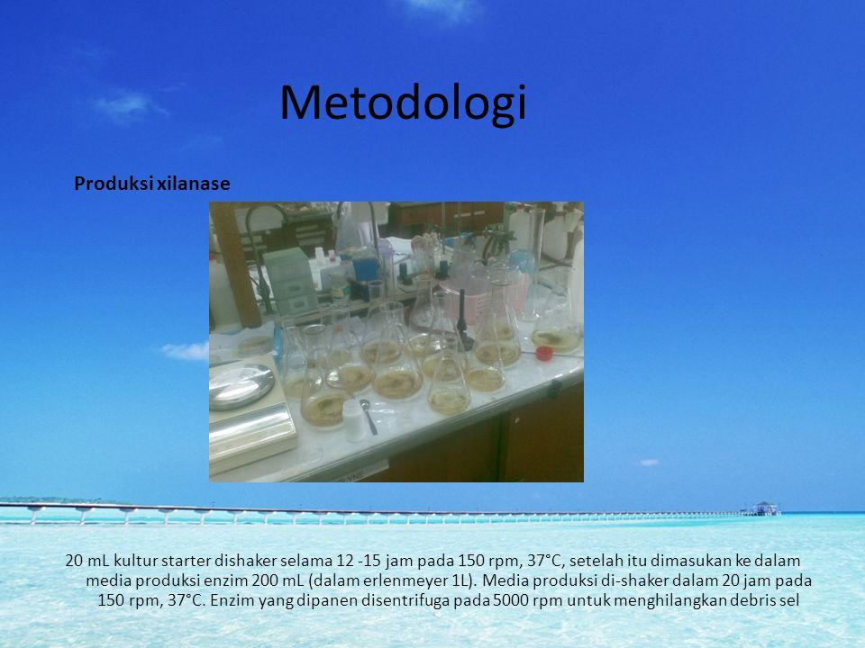 Metodologi Produksi xilanase