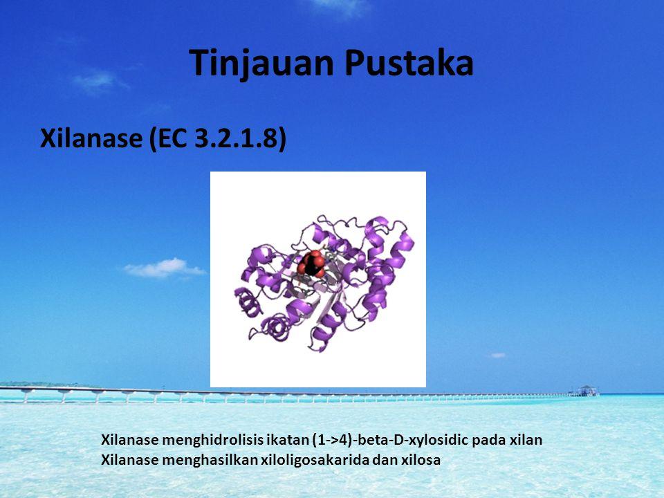 Tinjauan Pustaka Xilanase (EC 3.2.1.8)