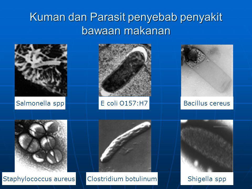 Kuman dan Parasit penyebab penyakit bawaan makanan
