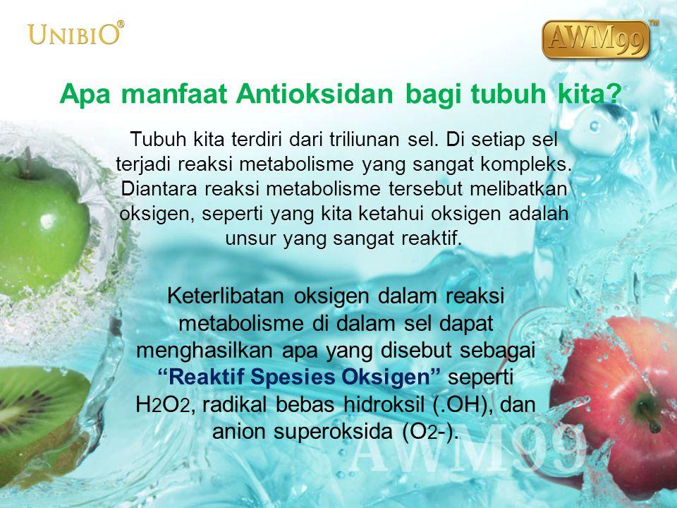 Apa manfaat Antioksidan bagi tubuh kita