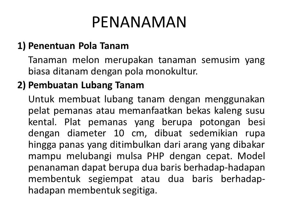 PENANAMAN