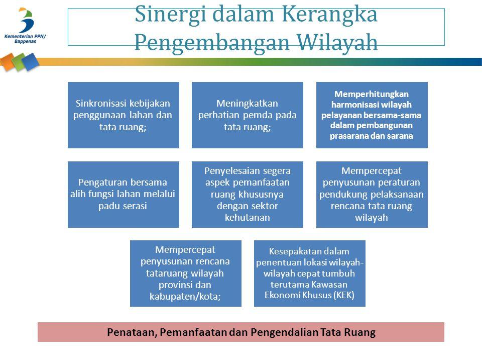 Sinergi dalam Kerangka Pengembangan Wilayah