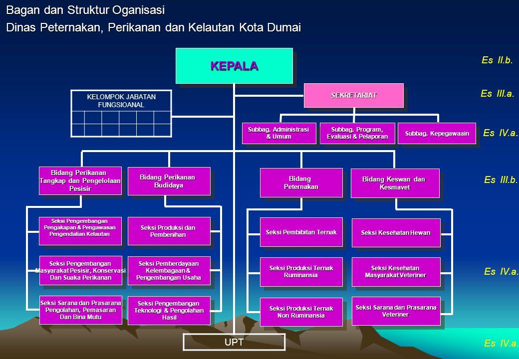 Bagan dan Struktur Oganisasi Dinas Pekerjaan Umum Kota Dumai