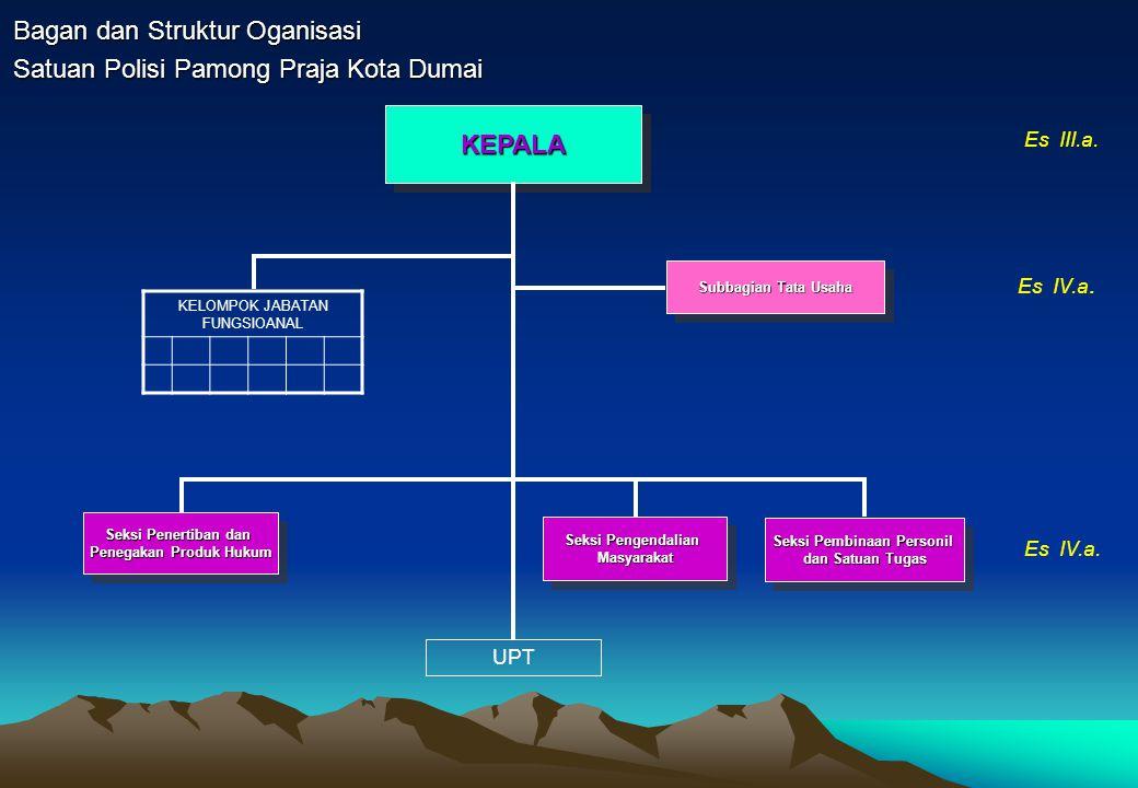 Bagan dan Struktur Oganisasi
