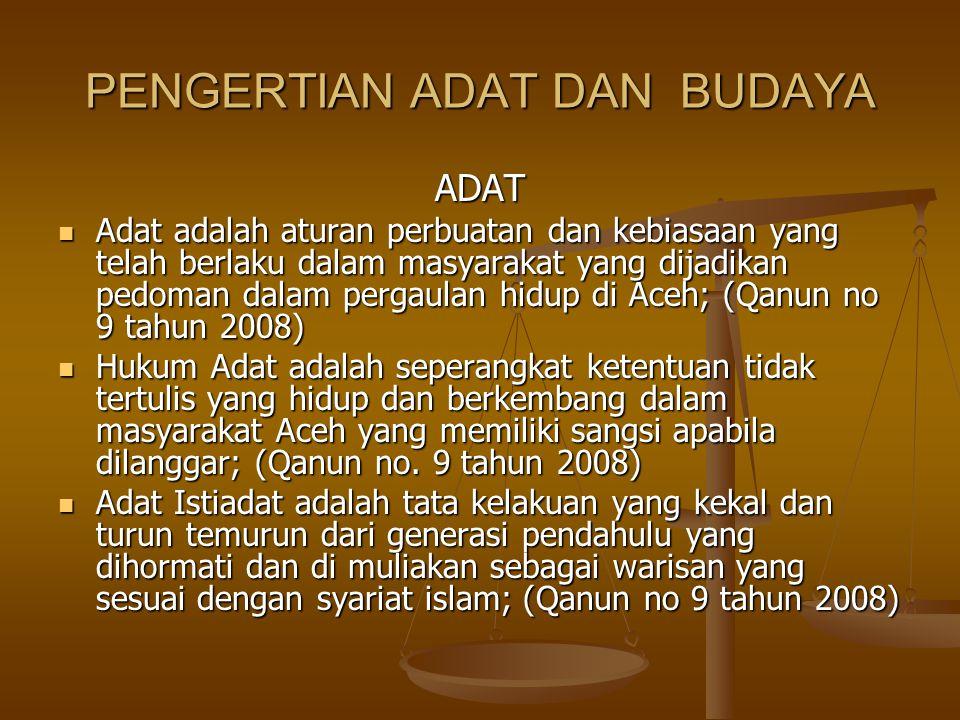 PENGERTIAN ADAT DAN BUDAYA