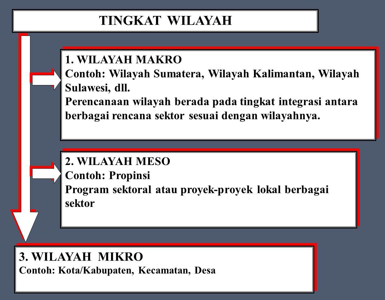 TINGKAT WILAYAH 3. WILAYAH MIKRO 1. WILAYAH MAKRO
