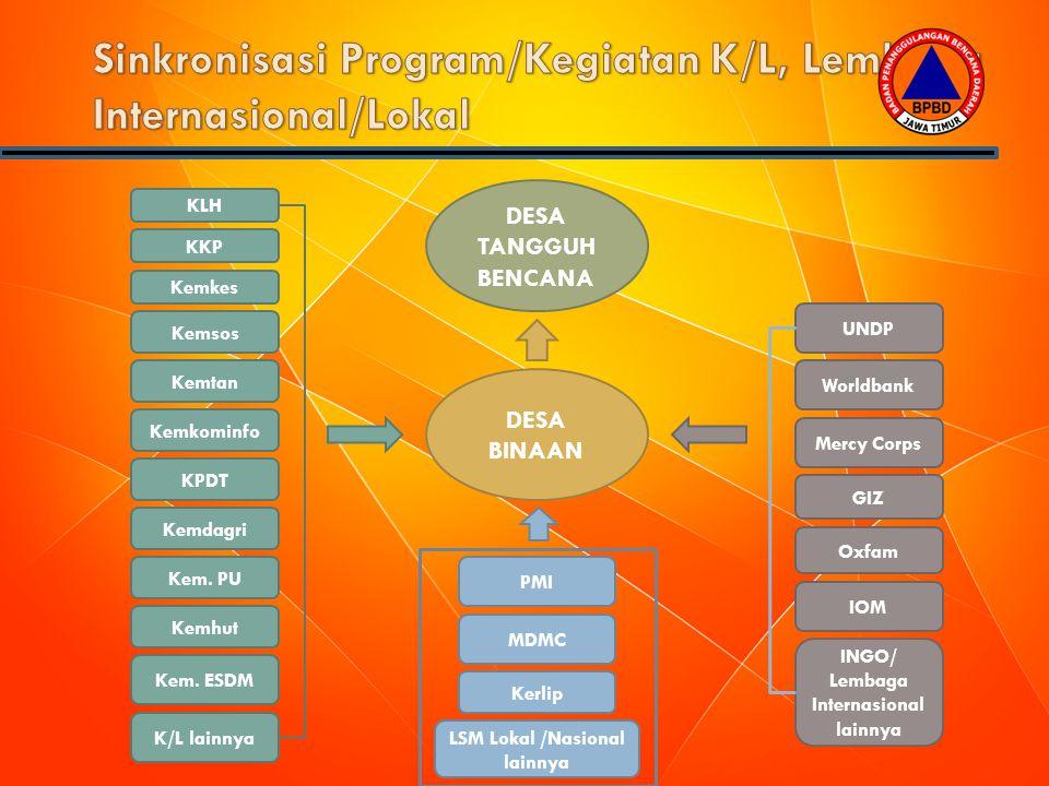 Sinkronisasi Program/Kegiatan K/L, Lembaga Internasional/Lokal