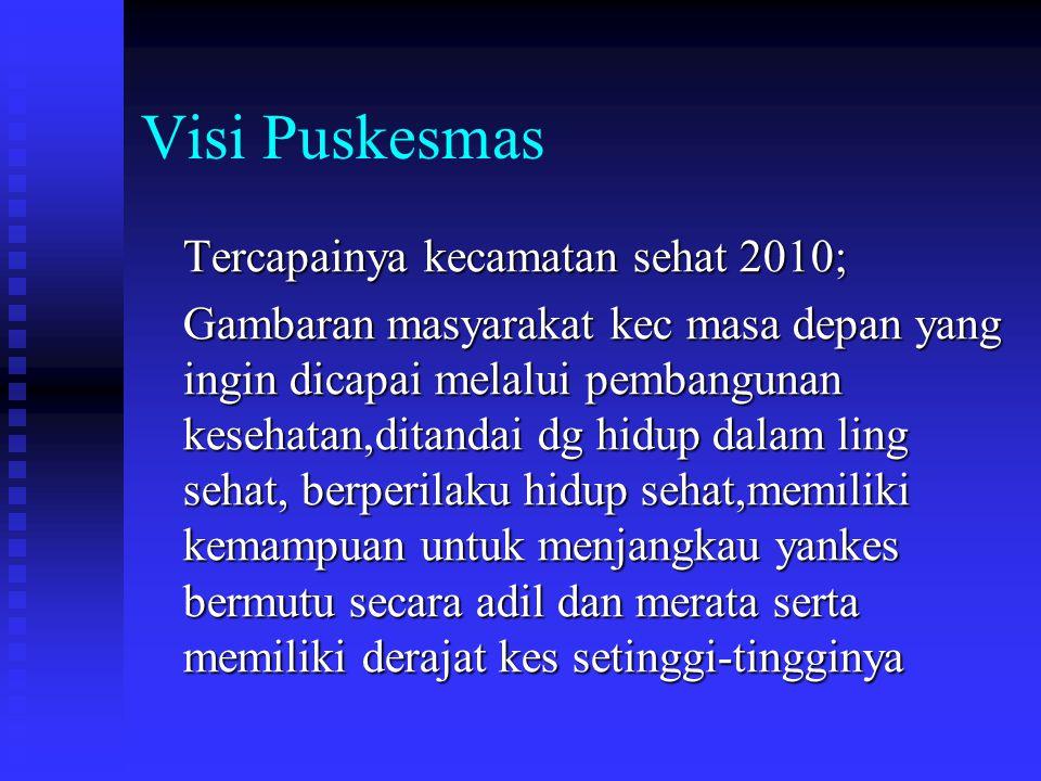 Visi Puskesmas Tercapainya kecamatan sehat 2010;