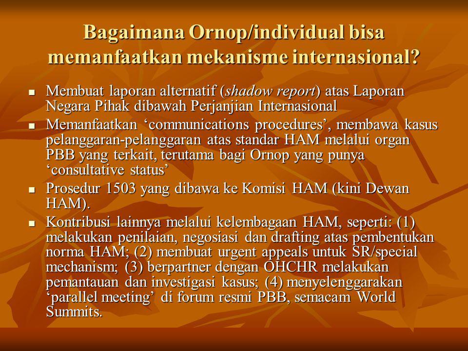 Bagaimana Ornop/individual bisa memanfaatkan mekanisme internasional