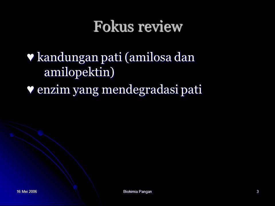 Fokus review ♥ kandungan pati (amilosa dan amilopektin)