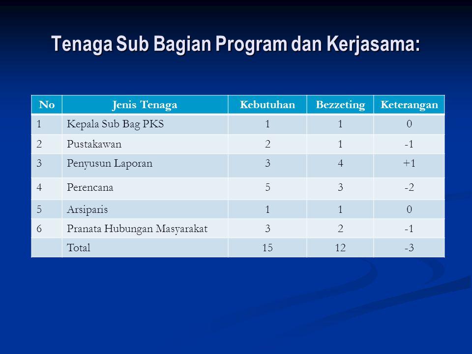 Tenaga Sub Bagian Program dan Kerjasama:
