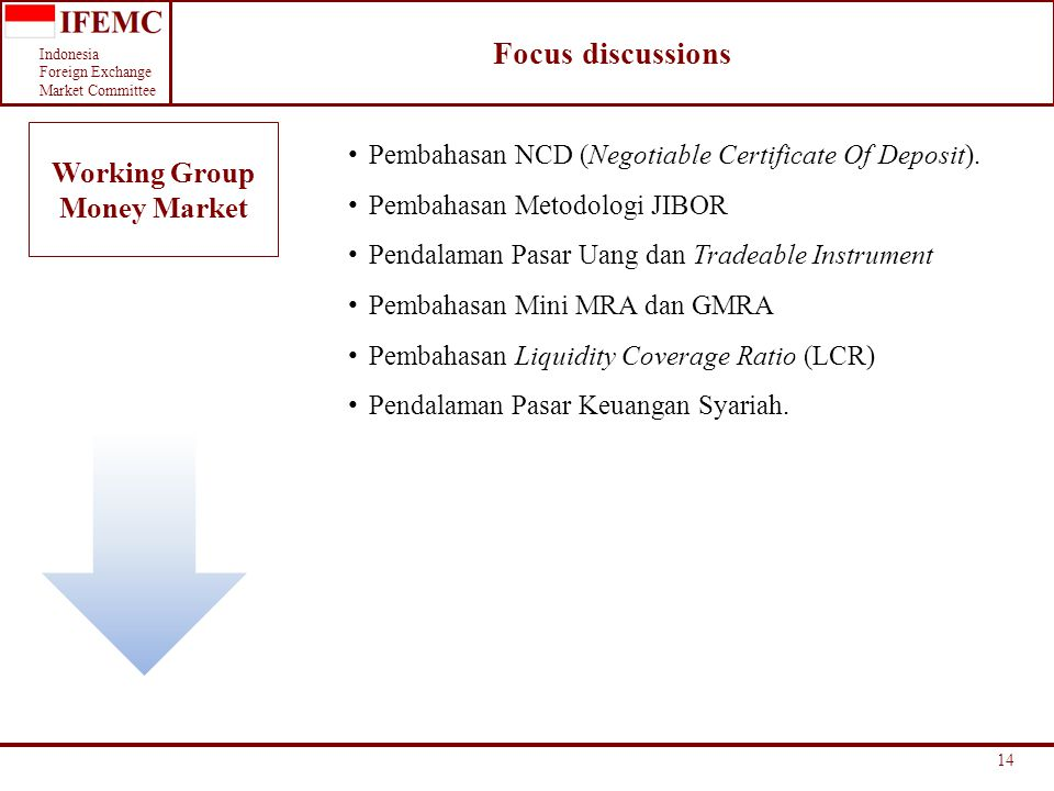 Focus discussions Working Group Money Market