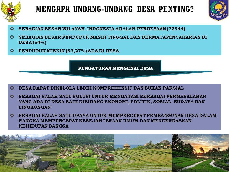 MENGAPA UNDANG-UNDANG DESA PENTING