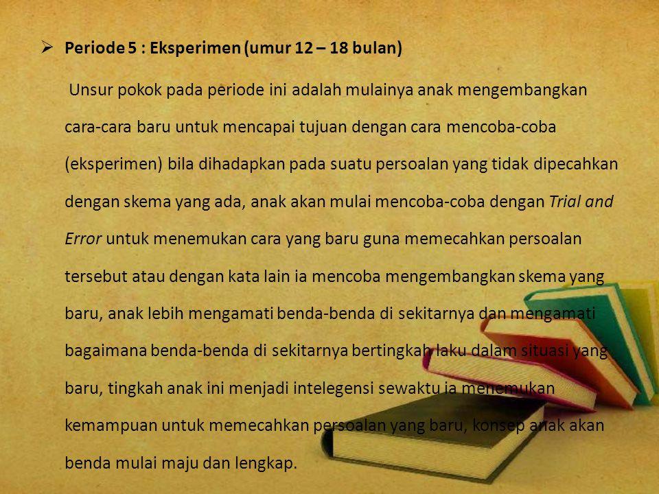 Periode 5 : Eksperimen (umur 12 – 18 bulan)