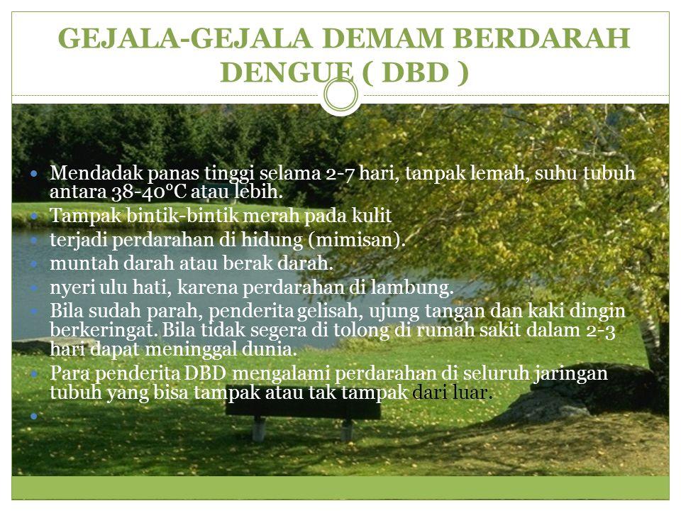 GEJALA-GEJALA DEMAM BERDARAH DENGUE ( DBD )
