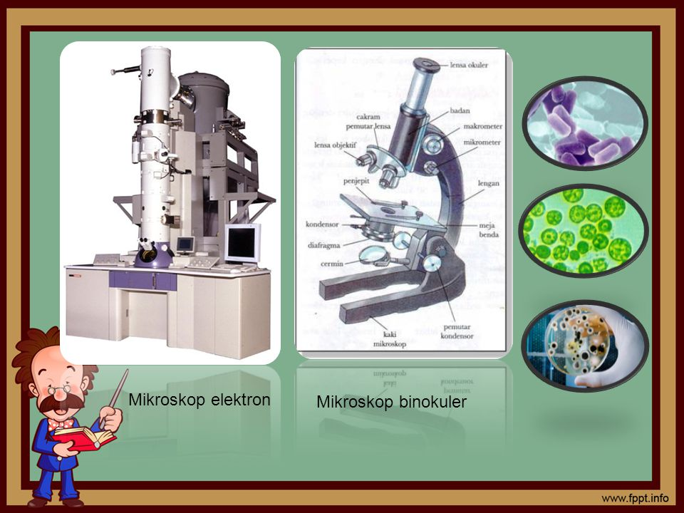 Mikroskop elektron Mikroskop binokuler