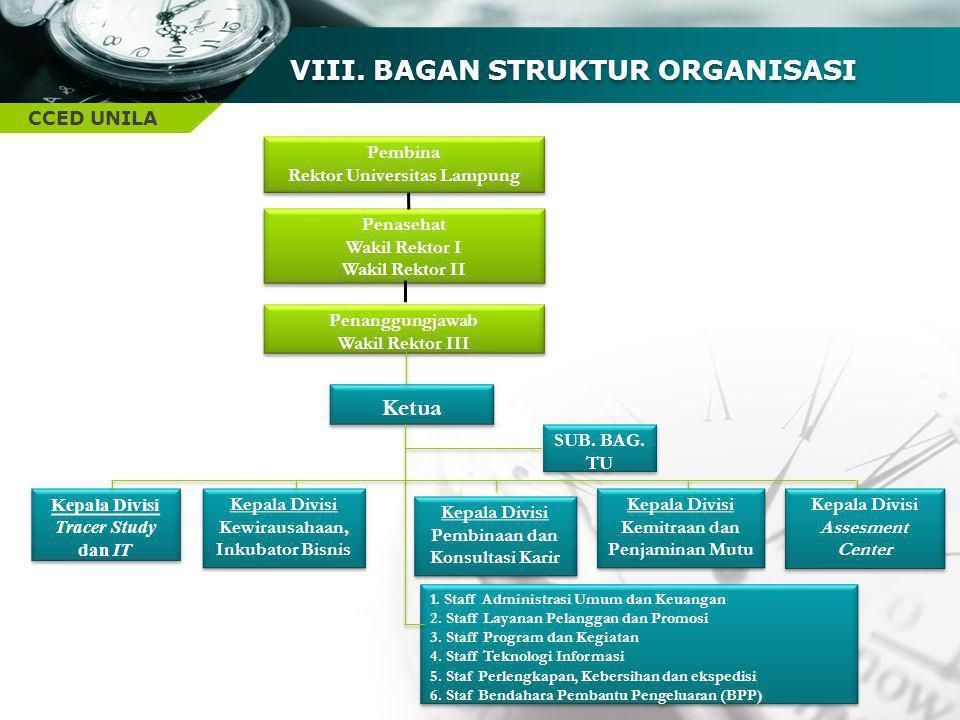 VIII. BAGAN STRUKTUR ORGANISASI