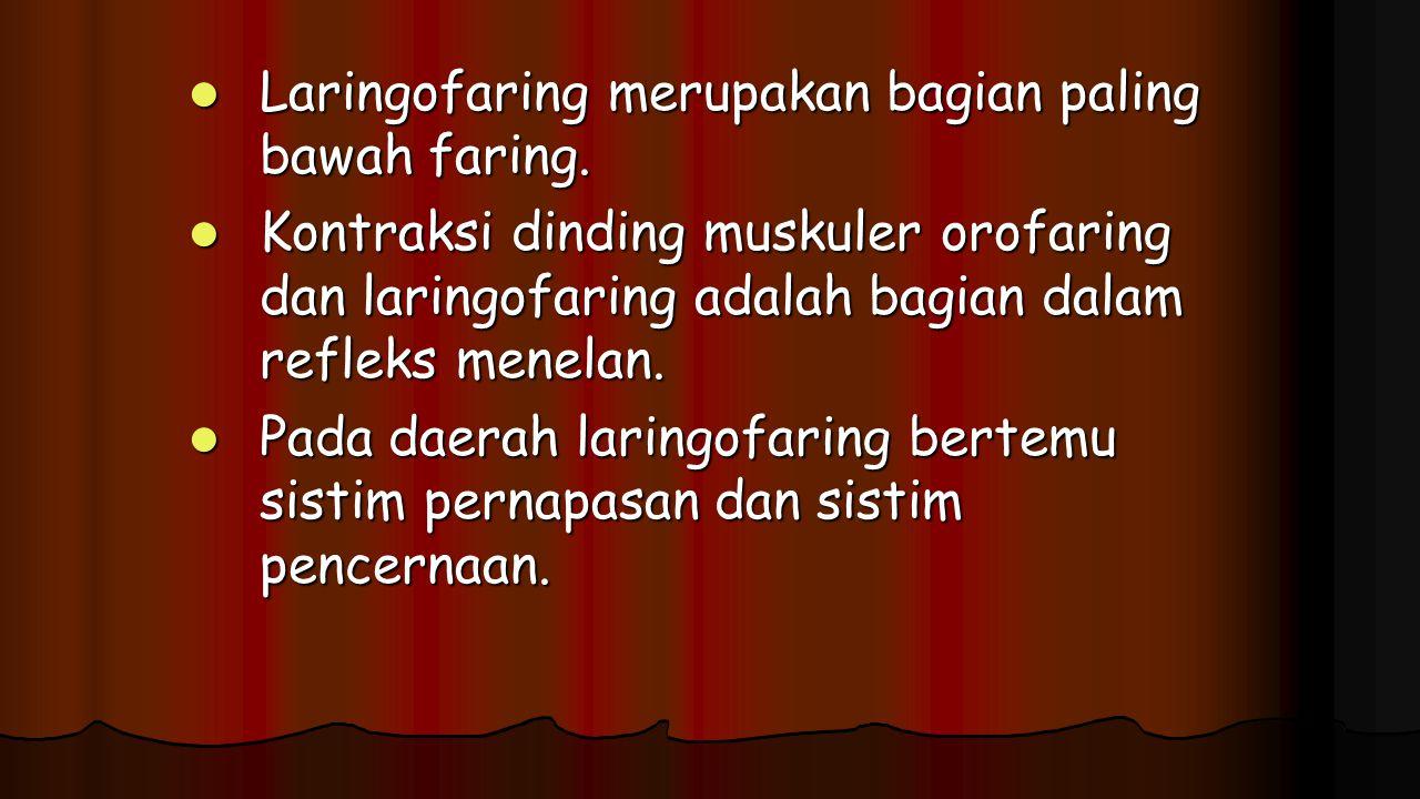 Laringofaring merupakan bagian paling bawah faring.