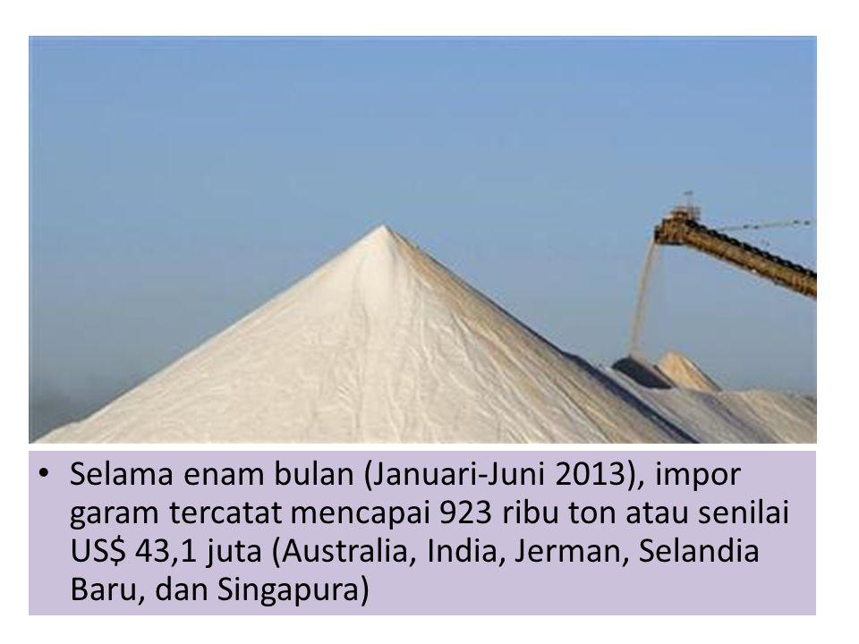 Selama enam bulan (Januari-Juni 2013), impor garam tercatat mencapai 923 ribu ton atau senilai US$ 43,1 juta (Australia, India, Jerman, Selandia Baru, dan Singapura)
