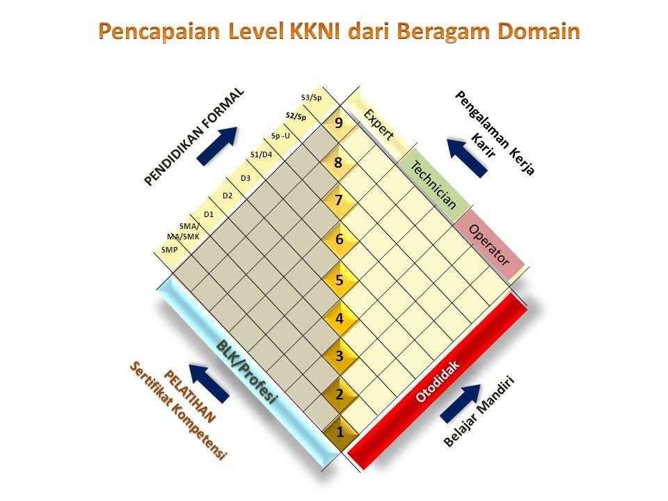 Pencapaian Level KKNI dari Beragam Domain Sertifikat Kompetensi